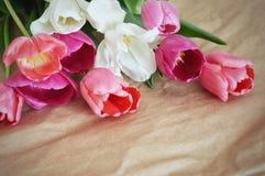 Beau bouquet des tulipes photo stock