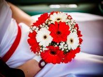 Beau bouquet rouge de mariage dans des mains de la jeune mariée Bouquet de mariage des gerberas rouges Photographie stock libre de droits
