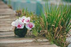 Beau bouquet sur le fond en bois Photo libre de droits