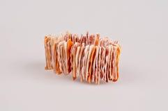Le bracelet a fait des coquilles de mer Photo stock