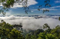 Beau brouillard dans les sud de la Thaïlande Photographie stock libre de droits