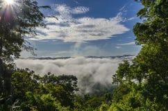 Beau brouillard dans les sud de la Thaïlande Image stock