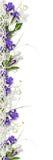 Beau cadre avec les fleurs pourprées de source Image libre de droits
