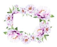 Beau cadre blanc de pivoine Bouquet des fleurs Impression florale Dessin de marqueur illustration libre de droits