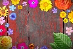 Beau cadre de fleur avec vide au centre sur le fond en bois peint minable rouge de bureaux Composition florale du ressort ou de l photographie stock