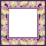 Beau cadre de ressort fait de fleurs et feuilles roses avec des veines Cadre rose et pourpre carré avec le fond blanc pour un tex Image libre de droits