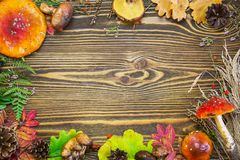 Beau cadre des matériaux naturels, champignons, cônes, feuilles d'automne, agarics de mouche, baies Images libres de droits