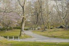 Beau Central Park New York - endroit merveilleux pour détendre MANHATTAN - NEW YORK - 1er avril 2017 Photographie stock