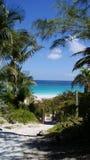 Beau chemin à l'eau clair comme de l'eau de roche de turquoise d'une plage des Caraïbes images libres de droits