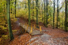 Beau chemin d'automne avec le pont et les feuilles et les arbres colorés photos stock