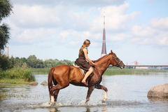 Beau cheval d'équitation d'adolescente en rivière Photos libres de droits