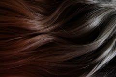 Beau cheveu Longs cheveux fonc?s boucl?s Coloration avec le gradient du rouge à noircir image stock