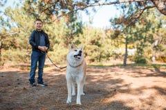 Beau chien de cutie marchant avec le propriétaire dehors Concept d'animal familier Images stock