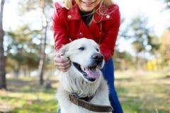 Beau chien de sourire marchant avec le propriétaire dehors Concept d'animal familier Images stock