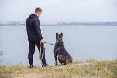 Beau chien marchant avec le propriétaire dehors Concept d'animal familier Images stock