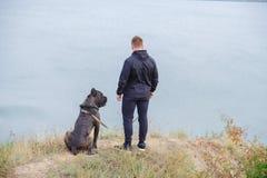 Beau chien marchant avec le propriétaire dehors Concept d'animal familier Image libre de droits