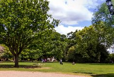 Beau ciel bleu d'été avec les nuages blancs au-dessus des arbres verts Photo libre de droits