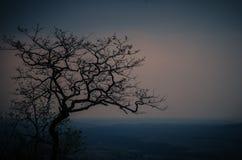 Beau ciel de soirée image stock