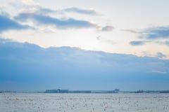 Beau ciel foncé Coucher du soleil Sun Nuages de flottement rapides coucher du soleil givré de vrai hiver dans le domaine Image stock