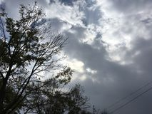 Beau ciel nuageux, arbres Photos stock