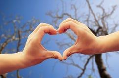Beau coeur d'amour Image libre de droits