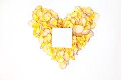 Beau coeur des pétales de rose jaune-orange sur le blanc avec la feuille blanche Images libres de droits