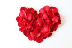 Beau coeur des pétales de rose rouges d'isolement sur le blanc Photos libres de droits