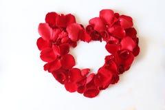 Beau coeur des pétales de rose rouges d'isolement sur le blanc Photographie stock libre de droits