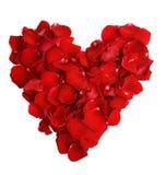 Beau coeur des pétales roses rouges Photos stock