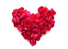 Beau coeur des pétales roses rouges Image libre de droits