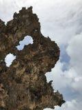 Beau corail sec sur une plage de paradis Images libres de droits