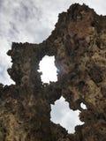 Beau corail sec sur une plage de paradis Images stock