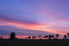 Beau coucher du soleil Arbres sur un coucher du soleil à l'arrière-plan d'été image stock