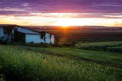 Beau coucher du soleil au-dessus de ferme et de cabane humbles pendant la récolte maximale Images libres de droits