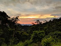 Beau coucher du soleil au-dessus de jungle foncée image stock