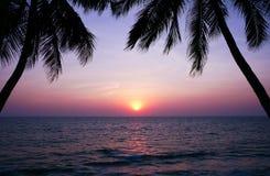 Beau coucher du soleil au-dessus de la mer et des silhouettes de palmiers Photos libres de droits