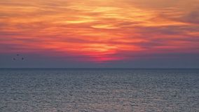 Beau coucher du soleil au-dessus de la mer ouverte clips vidéos