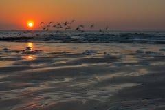 Beau coucher du soleil au northsea belge photographie stock