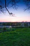 Beau coucher du soleil avec des arbres Images libres de droits