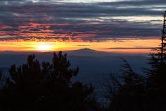 Beau coucher du soleil, avec des silhouettes d'arbres dans le premier plan, un va Photographie stock libre de droits