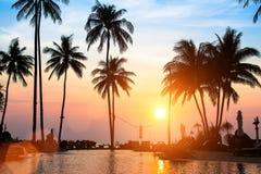 Beau coucher du soleil avec des silhouettes des palmiers Photo libre de droits