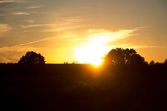 Beau coucher du soleil avec l'arbre Image stock