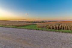 Beau coucher du soleil avec le bel horizon au-dessus d'un champ de maïs en Omaha Nebraska photo libre de droits