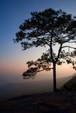 Beau coucher du soleil crépusculaire chez Phu Kra Dung Image libre de droits