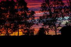Beau coucher du soleil d'été au-dessus de la silhouette d'arbre et de maison Photographie stock