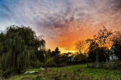 Beau coucher du soleil dans un jardin Photo stock