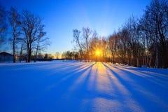Beau coucher du soleil dans une forêt de l'hiver Photos stock