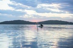 Beau coucher du soleil de plage près de Sydney, Australie Images libres de droits