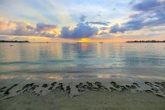 Beau coucher du soleil des Caraïbes sur une station balnéaire Photos libres de droits