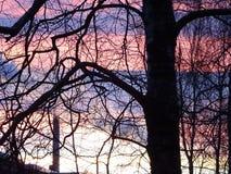 Beau coucher du soleil en Finlande, ici en Scandinavie Image stock